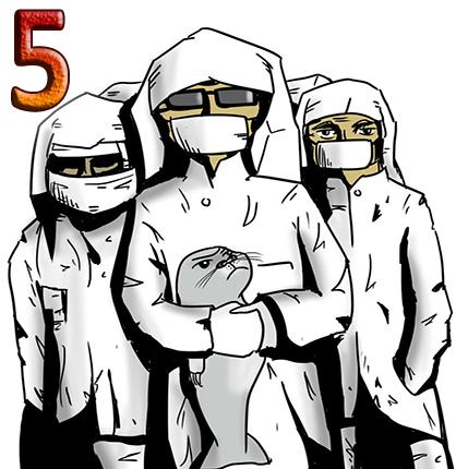5panawave