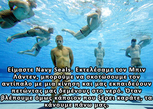 sealsdrown